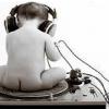 Выбор акустики для домашнег... - последнее сообщение от Старый